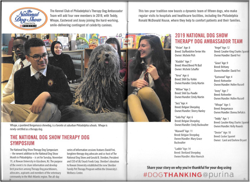 Therapy Dog Ambassador