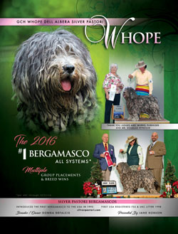 Miss Whope - Dog News