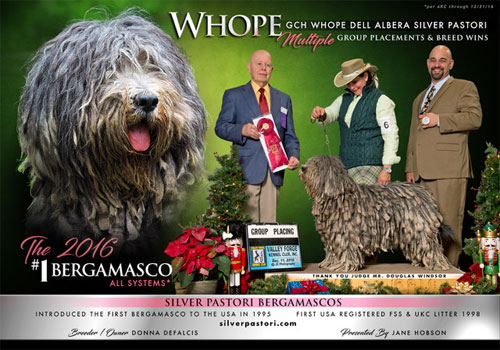 Whope Goes to Westminster
